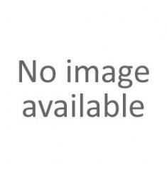Kostki gitarowe SKELEANIMALS - 6 PACK - zestaw / komplet kostek gitarowych